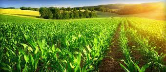 L'agriculture de Bourgogne Franche-Comté veut se faire connaitre.